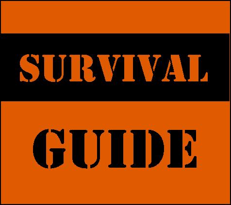 Second Semester Survival Guide